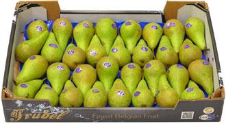 Frubelbox - Päron