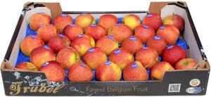 Frubelbox - Äpplen